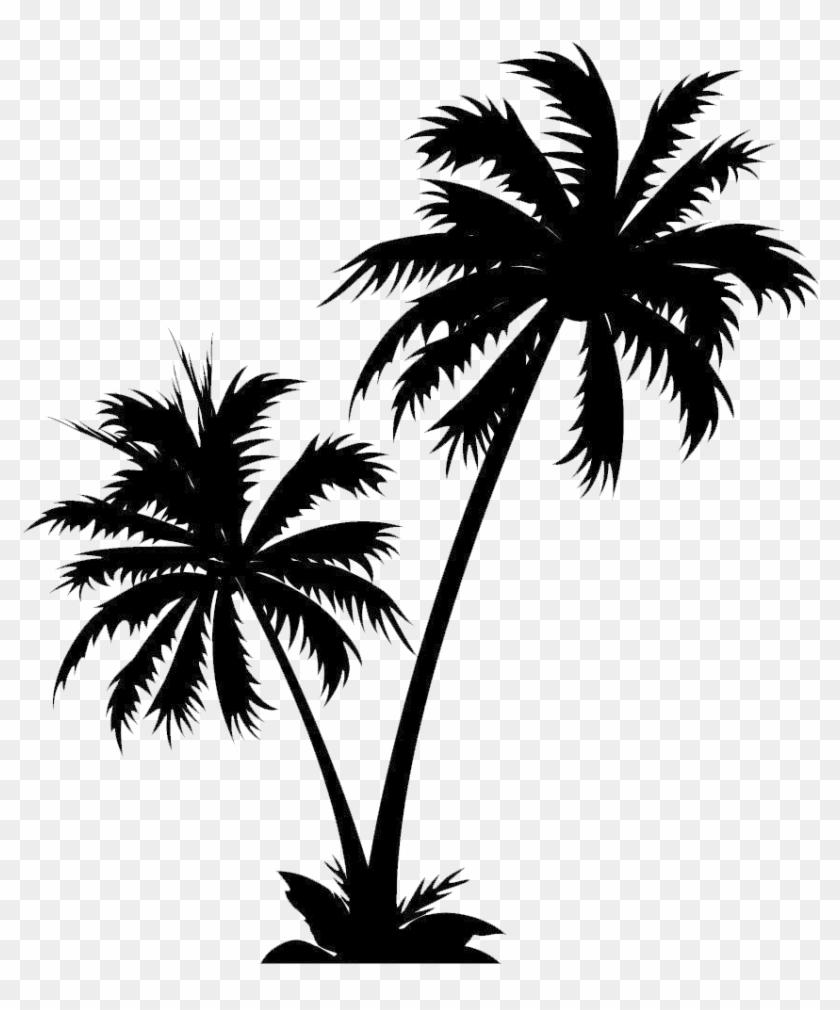 White Christmas Tree Png Transparent.Pine Tree Clipart Black And White Christmas Tree Coconut