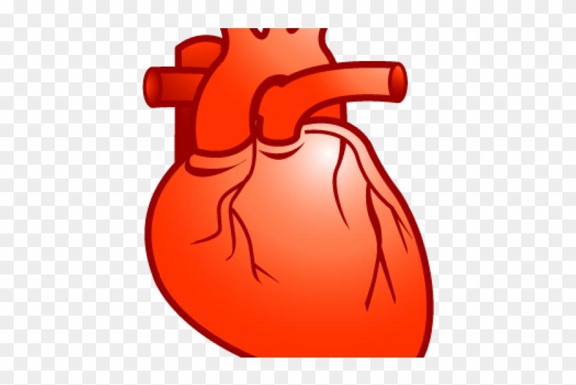 Heart real. Clipart cartoon no background