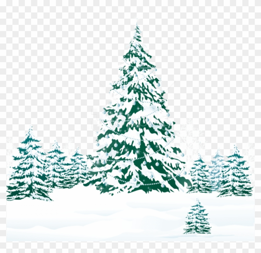 Christmas Trees Png.Free Png Snowy Winter Ground With Trees Png Winter