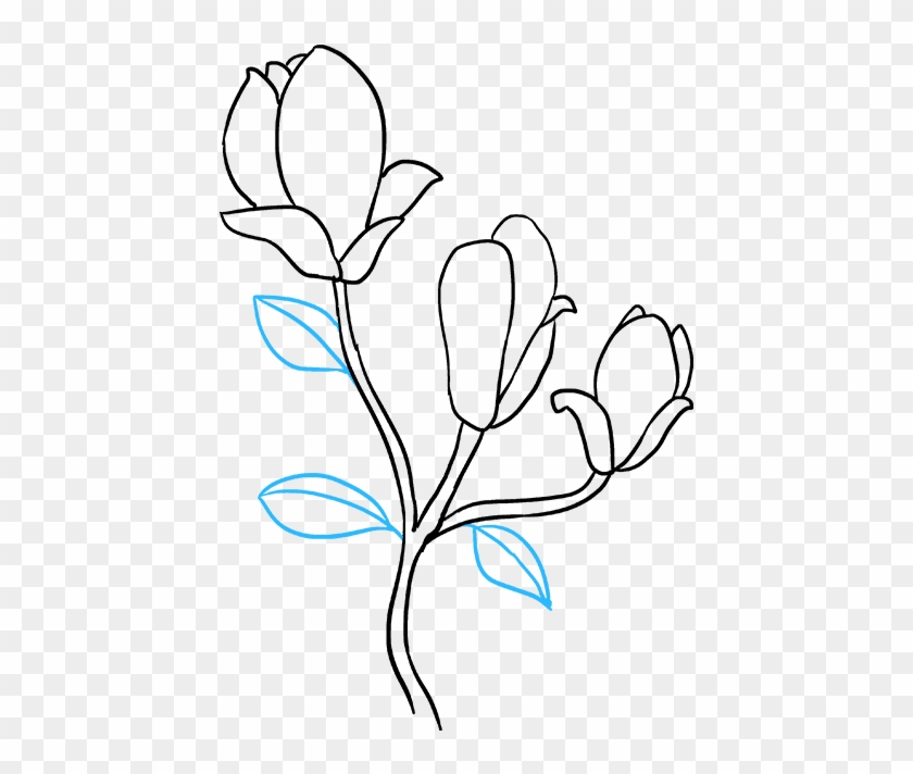 How To Draw Flowers Really Easy Tutorial Magnolia Flower