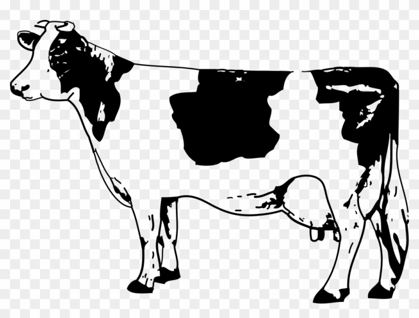 Cow black and white. Clipart drawing hd png