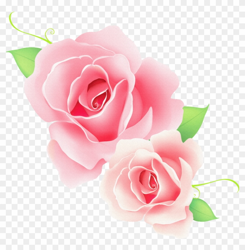 vector rose flower png