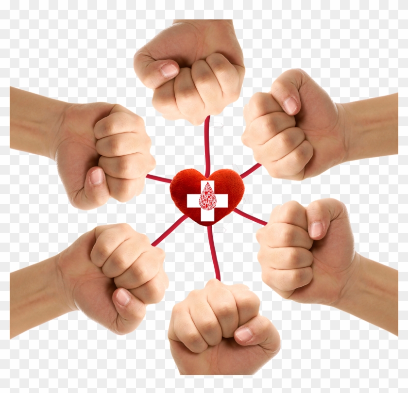 Blood Donation Png Transparent - Blood Donation, Png