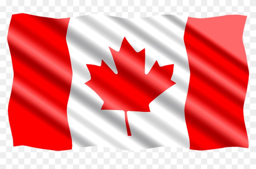 Bandera Canada Png Bandera De Canada Png Transparent Png