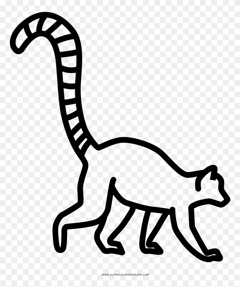 Ring-tailed lemur coloring page | Free Printable Coloring Pages | 1003x840