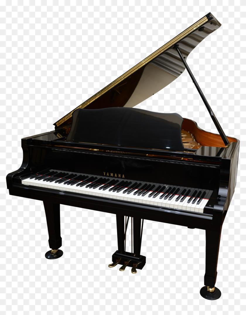 Cristofori Grand Piano Hd Png Download 1000x1231 6576816 Pinpng