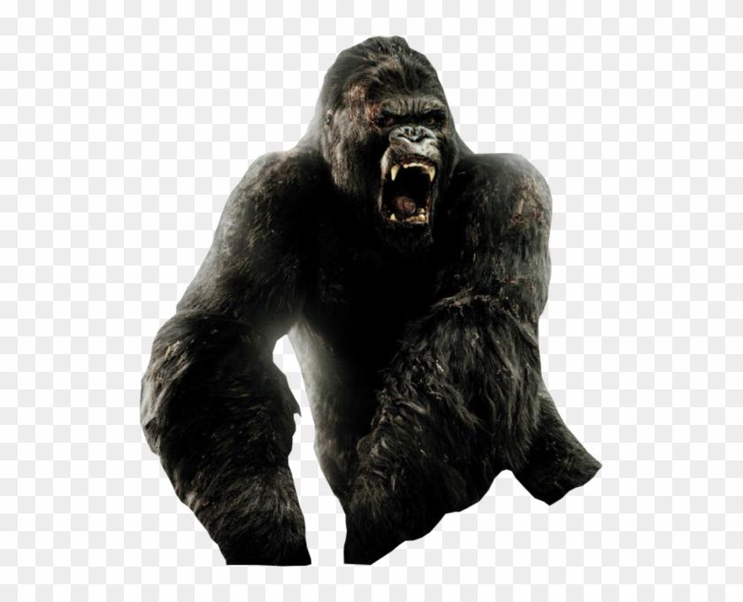 King Kong Rampage George Vs King Kong Hd Png Download 523x600